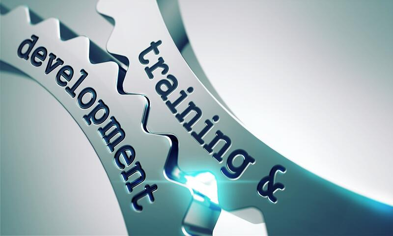 IT & Cybersecurity Training for Developers
